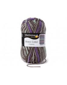 Włóczka Bravo Color 2107
