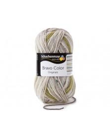 Włóczka Bravo Color 2108