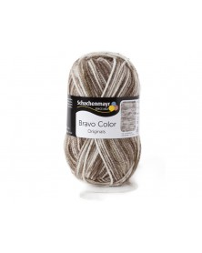 Włóczka Bravo Color 2111