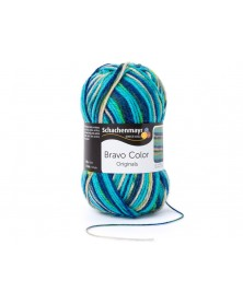 Włóczka Bravo Color 2119